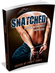 snatched_3d_500